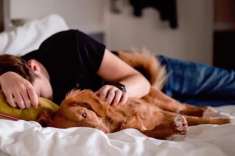 How to Improve Sleep Quality